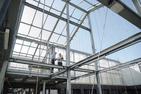 Male professionals planning while standing in greenhouse - JOSEF01877