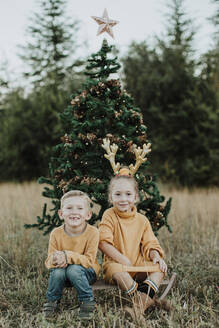 Smiling siblings sitting by Christmas tree on grassy land - GMLF00595