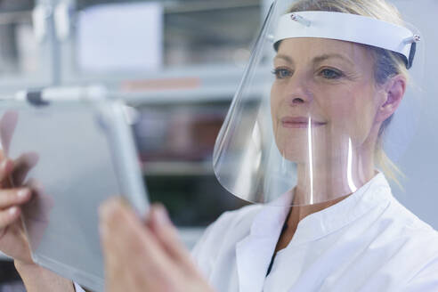 Mature female scientist wearing protective face shield while using digital tablet at laboratory - MOEF03402
