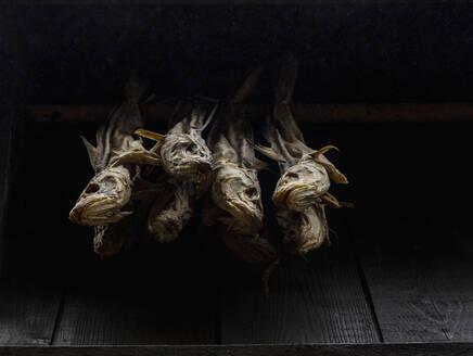 Dried fish on black background - FSIF05196