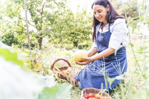Woman kneeling while holding fresh melon from vegetable garden - FMOF01190