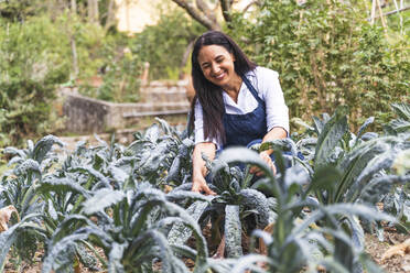 Happy mature woman crouching while looking at fresh kale leaves growing in vegetable garden - FMOF01196