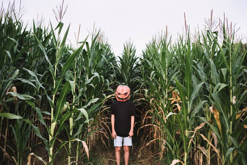 Anonymous person wearing spooky Halloween pumpkin mask and black cloak standing in cornfield and looking at camera - ADSF16326