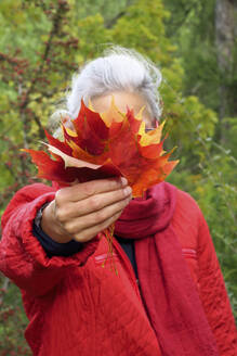 Mature woman with white hair holding autumn leaves in forest - JTF01656