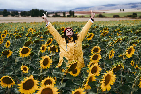 Young woman standing in sunflower field making peace sign gestures - EBBF00871