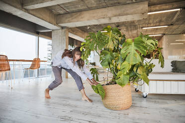 Mature woman pushing potted plant while standing at home - FMKF06558