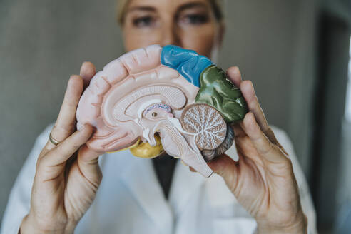 Scientist showing artificial internal organ while standing at clinic - MFF06336