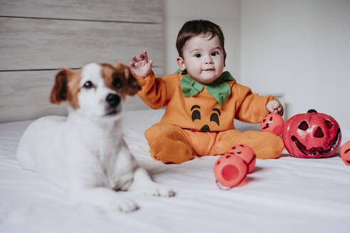 Baby boy wearing halloween costume sitting with dog on bed at home - EBBF00878