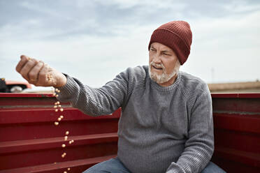 Farmer wearing knit hat examining cultivated soybean against clear sky - ZEDF03977
