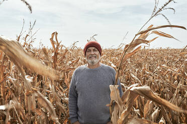 Smiling farmer standing at corn field during sunny day - ZEDF03983