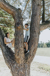 Mother and son sitting on pine tree in public park - MFF06400