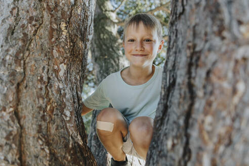 Boy peeking through branches of pine tree in public park on sunny day - MFF06406