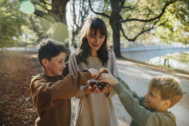 Mother and sons collecting chestnuts while standing in public park - MFF06427