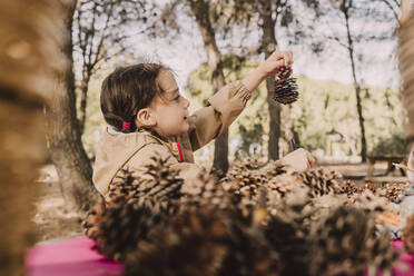 Cute girl looking at pine cone in park - ERRF04626