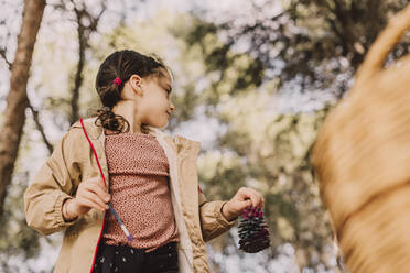 Girl holding paintbrush and pine cone while looking away at park - ERRF04629