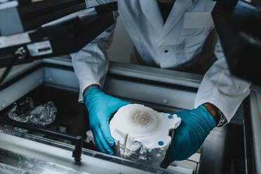 Scientist removing preserved human brain from freezer while standing by freezer at laboratory - MFF06520