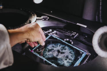 Close-up of scientist hand removing human brain slide from microscope at laboratory - MFF06613