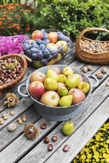 Garden table filled with autumn harvest of nuts and fruits - GWF06769