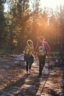 Young couple with backpacks hiking in sunny woods - CAIF30028
