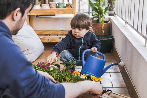 Father planting plant while sitting by boy holding watering can at balcony - FLMF00308