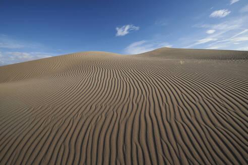 Natural wave pattern on Cadiz Dunes at Mojave Desert, Southern California, USA - BCDF00474