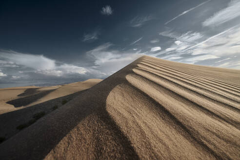 Cadiz Dunes during sunset at Mojave Desert, Southern California, USA - BCDF00486