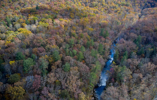 Aerial view of river flowing through George Washington and Jefferson National Forests in autumn - BCDF00503