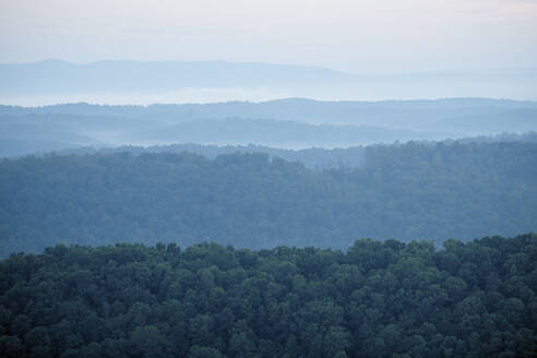 Aerial view of Appalachian forest shrouded in morning fog - BCDF00537