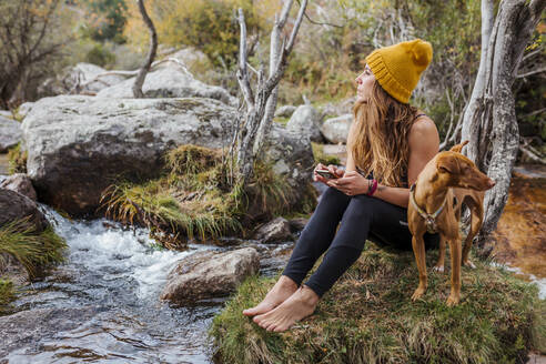 Woman using mobile phone while sitting by dog on rock in forest at La Pedriza, Madrid, Spain - MRRF00688