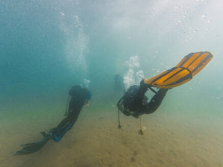 Divers swimming underwater - RSGF00426
