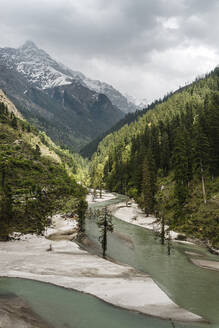 Drone view of Parvati River flowing along forested valley in Himalayas, India - JMPF00696