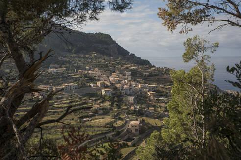 Spain, Mallorca, Banyalbufar, Mountain village in summer - JMF00549