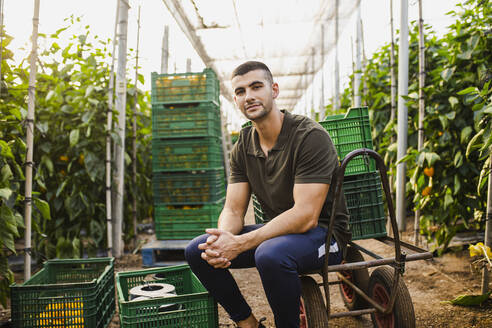 Confident young male farm worker sitting on cart by crates against plants at farm - MIMFF00349
