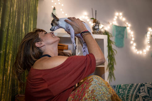Hippie woman playing with chihuahua while sitting at home - GGGF00742