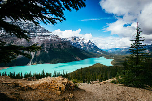 The blueish green water of Peyto Lake in Banff National Park - CAVF91675