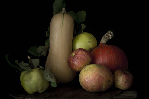 Still life of fresh apples, quinces, red kuri squashes and butternut squashes - ASF06683