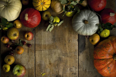 Large variety of fresh pumpkins, squashes and other fruits on wood - ASF06686