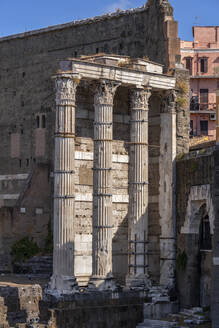 Italy, Rome, Forum of Augustus, ancient Corinthian columns of the Temple of Mars Ultor (the Avenger) - ABOF00600