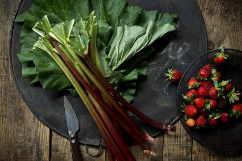 Kitchen knife, plate of strawberries and fresh rhubarb on rustic baking sheet - ASF06688