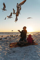 Seagulls flying over father and daughter at Siesta Key Beach during sunset - GEMF04606