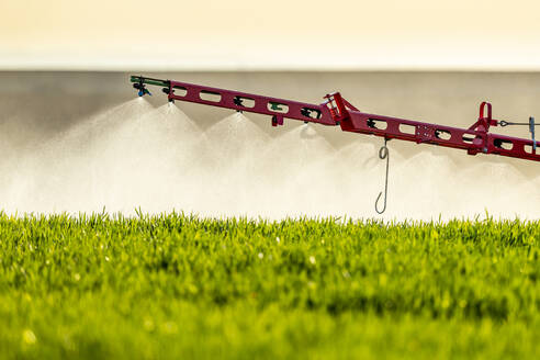 Close-up of tractor sprinkling fertilizer on crop in farm - NOF00140