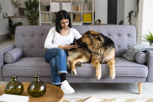 Young woman using mobile phone while sitting with pet dog on sofa in living room - GIOF11305