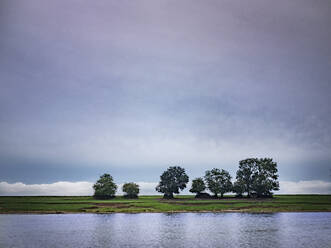 Cloudy sky over bunch of trees growing on bank of river Saone - HAMF00840
