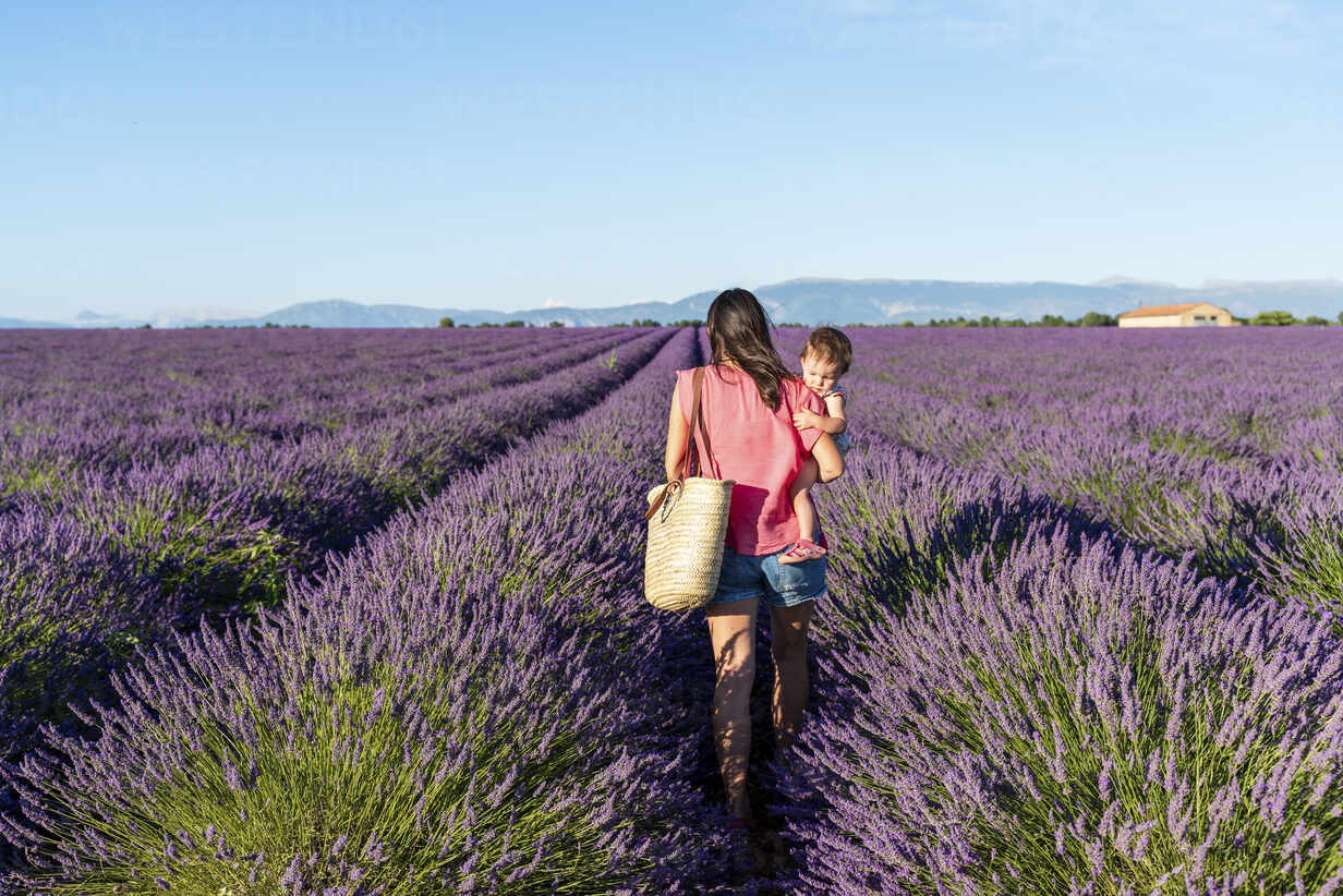 Mother holding happy baby girl in a lavender field at afternoon in Valensole, Provence, France - GEMF04693 - Gemma Ferrando/Westend61