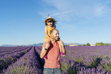 Happy little girl on shoulders of father in a lavender field at afternoon in Valensole, Provence, France - GEMF04702