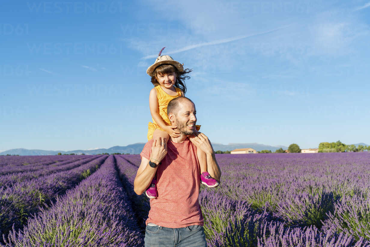 Happy little girl on shoulders of father in a lavender field at afternoon in Valensole, Provence, France - GEMF04702 - Gemma Ferrando/Westend61