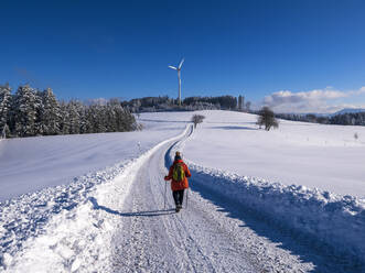 Germany, Black Forest, Freiamt, Person hiking on Schillinger Berg in winter - LAF02686
