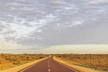 Australia, South Australia, Stuart Highway through desert - FOF12105