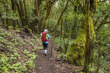Frau mit Rucksack wandert auf Waldweg im Lorbeerwald, Nationalpark Garajonay, La Gomera, Kanaren, Spanien - SIEF10118