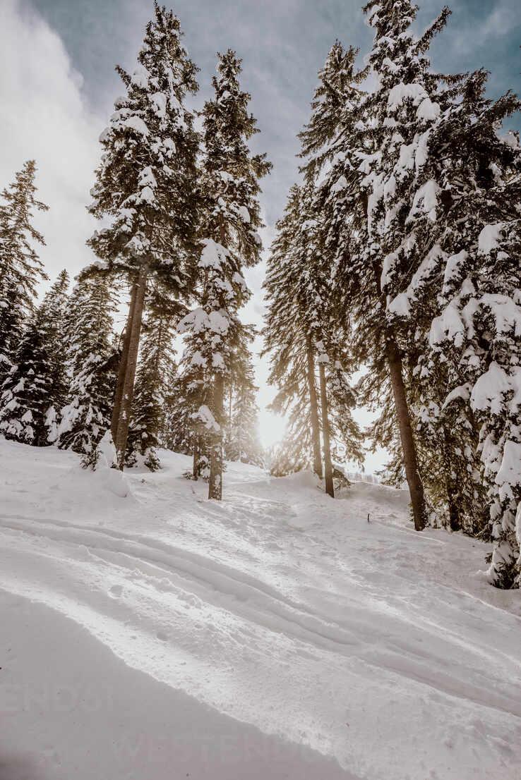 Skitour mit viel Neuschnee. Österreich, Kärnten, Gerlitzen (Berg), Villach - DAWF01780 - Daniel Waschnig Photography/Westend61
